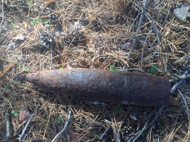 Собирал грибы, а нашел артснаряд: на Николаевщине местные жители обнаружили боеприпасы
