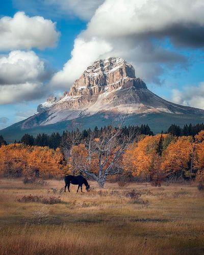 Красота природы Канады на снимках Stacy William Head.