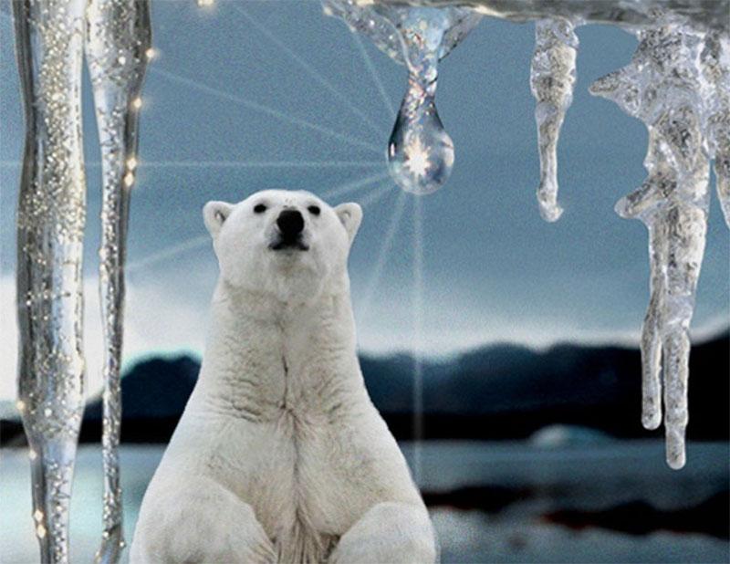 В ООН прогнозируют, что мир ждет потепление на 1,5° в ближайшие 5 лет