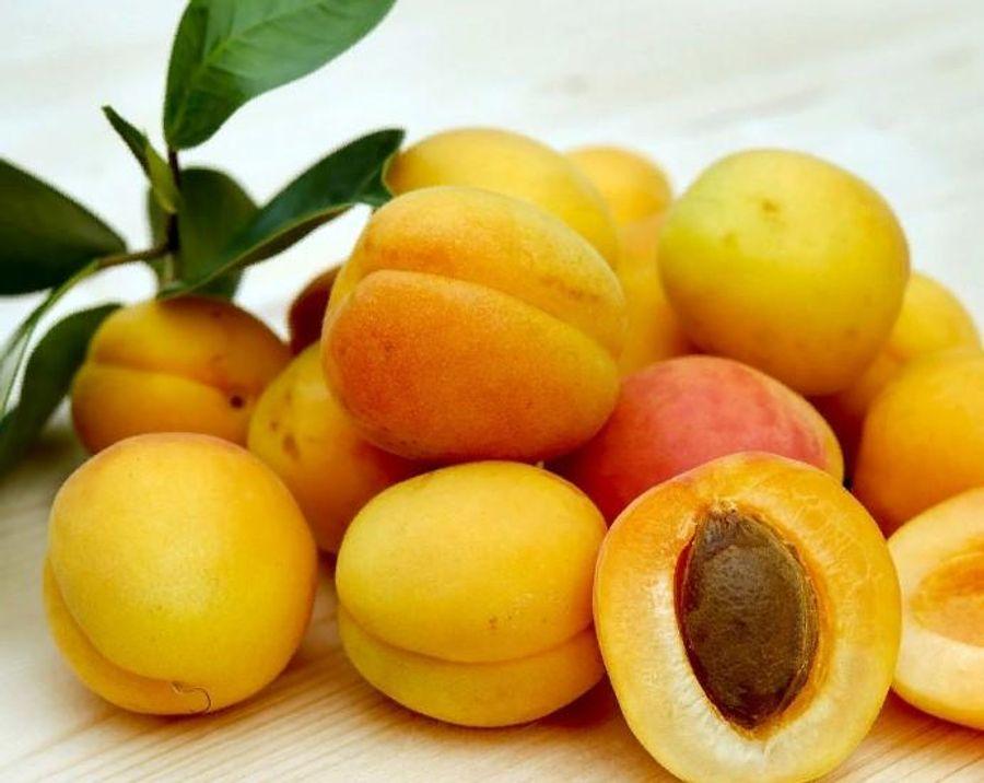 Названы полезные для насыщения организма цинком продукты