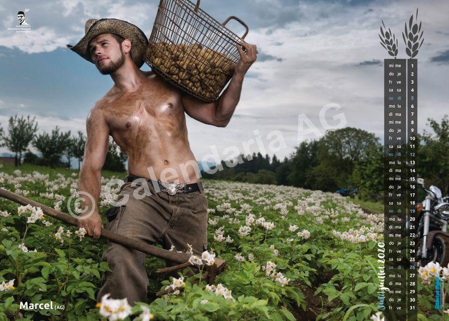 Календари со швейцарскими фермершами и фермерами на 2020 год