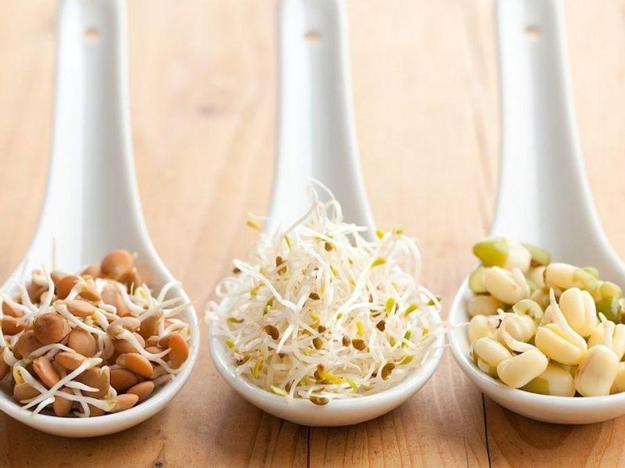 Зародыши пшеницы и других зерновых — 5 причин, почему вы должны включить их в рацион
