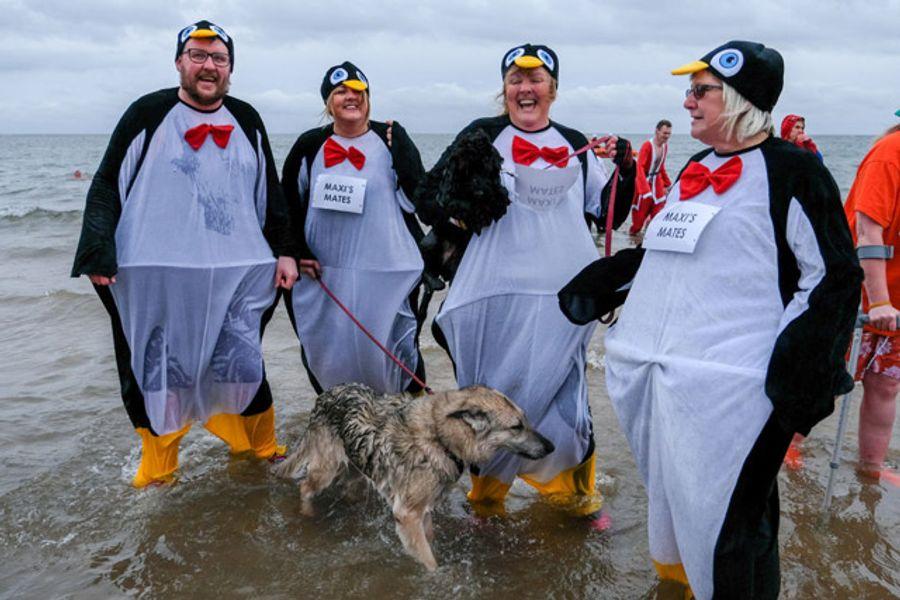 """Рождественские """"моржи"""" и """"пингвины"""": благотворительный заплыв-карнавал в Англии. Фоторепортаж"""