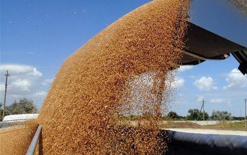 Украина обеспечивает продовольствием 150 млн человек в мире, – Минэкономразвития