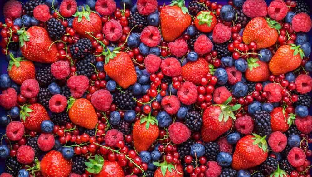 В Украине ягодный сезон под угрозой, – эксперты
